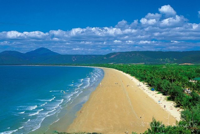 cairns helicopter with Gallery Port Douglas Vacation Home on Port Douglas Great Barrier Reef Tours 122 moreover Australia Shark Encounters Guide furthermore Man Critically Injured In Australia Shark Attack also Cape York Maps likewise cairnsattractions.