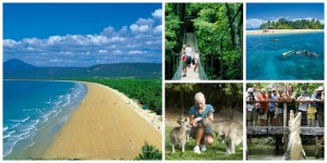 port-douglas-attractions-collage3